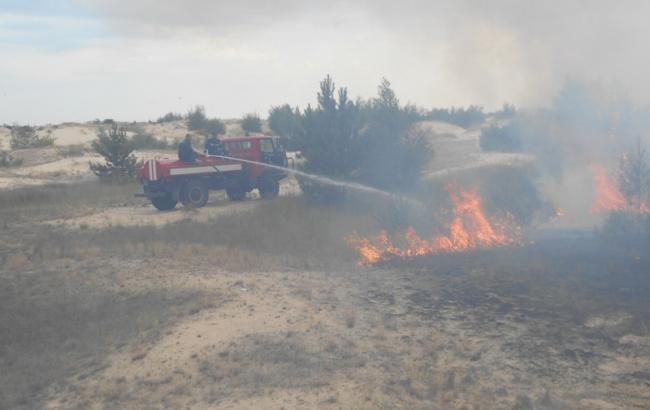 Пожежу в Чорнобильській зоні вдалося локалізувати на 25 га